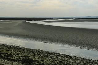 Matin en baie de Somme
