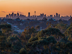 the city is waking up (bart.kwasnicki) Tags: sunrise sydney australia cityscape sky
