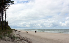 dbki beach (1) (kexi) Tags: beach sand horizon couple pair people two 2 sea balticsea dbki polska poland june 2015 canon view panorama coast shore sky clouds seaside instantfave