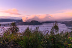 Mount Bromo valcano and mist (narenrit) Tags: bromo mountain mist light sun sunrise cloud sky morning valcano tree view beauty hill top scenic indonesia tropical asia asian east cliff travel trip mount sapatate different village country