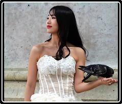 Paris: Lady with pigeon (Ioan BACIVAROV Photography) Tags: bacivarov ioanbacivarov photostream interesting beautiful wonderful wonderfulphoto woman women girl girls fille filles fata fete glamour sexy bird pigeon portrait summer fashion moda mode