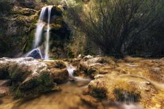 Blessed nature (Alberto Guinea) Tags: lucroit canon agua cascada naturaleza rio piedras flores bonitas colores salto paisaje espaa catarata vacaciones viaje plantas viva water waterfall nature river stones flowers pretty colors jump landscape spain vacation travel plants live