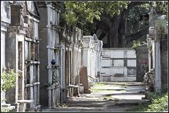 New Orleans 2016 - 03 (derekwatt) Tags: travel summer film analog 35mm nikon exploring neworleans lousiana analogphotography 35mmphotography nikonf4 c41 filmphotography unicolor