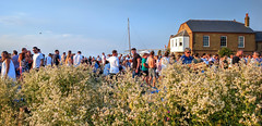Whitstable Oyster Festival (Aliy) Tags: whitstable oysterfestival kent crowd people seafront