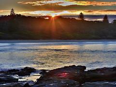 Pine sunset over water (elphweb) Tags: hdr ocean sea seaside sunset norfolkpines