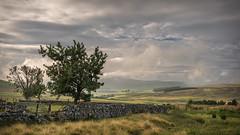 Summer View (Dylan Nardini) Tags: morning summer scotland lanarkshire nikond810 mist southlanarkshire sky fog hills sunrise 2016 clouds