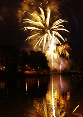 Palm Burst (Sundornvic) Tags: shrewsbury flowershow fireworks river severn quarry park water wet reflections reflection bridge light show shropshire display