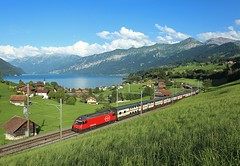 460 039, Faulensee, 3 Aug 2016 (Mr Joseph Bloggs) Tags: faulensee sbb 460 460039 039 interlaken ost basel train treno bahn intercity inter city railway railroad lake thun ic1082 switzerland
