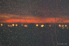 Morning Rain (Gaviotita) Tags: nikon nikond3200 sunrise rain morning morningrain lluvia amanecer sanluispotos gabygarca gaviotita mxico nature naturaleza