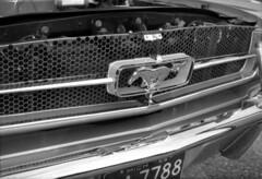 mustang (bergytone) Tags: analog film bw canon 110ed 110 cartridge ilford fp4 xtol mustang carshow badge pony grandhaven mi