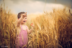 In the fields with the poppies!! (NawiPhotography) Tags: child children childrenphotography childrens cute colors baby beauty boy babe flickr nikon nikond610 new nikkor natural naturallight ninos italia rome portrait people photo photography photos