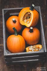 Pumpkin2016-WM by Meeta K Wolff-0134 (Meeta Wolff @ What's For Lunch, Honey?) Tags: erfurtermesse meetakwolff meetak pumpkin foodphotography knives photography styling vegetables wsthof
