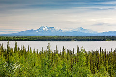 Willow Lake (* mateja *) Tags: northamerica usa alaska richardsonhighway willowlake overcast landscape nature holiday mateja