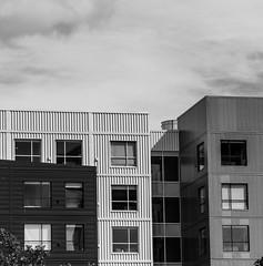 Hyatt Hotel, Seattle DSC04141-Edit (nianci pan) Tags: seattle spaceneedle seattlecenter tower sky cloud skyscraper building architecture abstract modern contemporary pattern geometric geometry curve line bnw nianci pan sony sonyalphadslr sonyphotographing washington