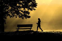 time for a break (Wackelaugen) Tags: silhouette girl woman people person bench morning rays sunrise walk walking tree bsnau vaihingen wiesental germany europe canon eos photo photography wackelaugen googlies