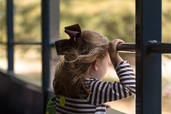 Daydreaming  HWW (Irina1010) Tags: girl portrait window wind hair bow hairbow train trip daydreaming canon
