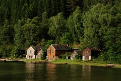 Sunny moment... (DoctorMP) Tags: norway norge hardanger summer mountains huts kinsarvik fjord hardangerfjorden forest