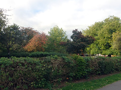 2016_10_190001 (Gwydion M. Williams) Tags: coventry britain greatbritain uk england warwickshire westmidlands autumn