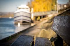 Sur le banc (Rgis Corbet) Tags: paris france river europe ledefrance rivire capitale fr fra fleuve yvelines coursdeau trielsurseine