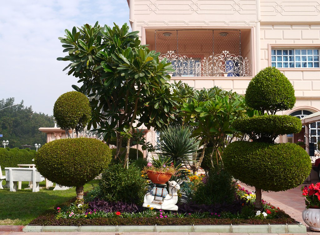 The world 39 s most recently posted photos of kuwait and for Garden design kuwait