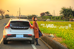 XD (Moson Kuo) Tags: flowers sunset portrait cars golden volvo nikon glow diesel sweden taiwan automotive vehicles      d2    changhua 2015  powershift         afs2470mm28g  d800e v40crosscountry