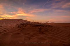 غروب سآحر (faisal almoammar) Tags: nikon غروب طبيعة صحراء رمال ذهب تجريد نفود