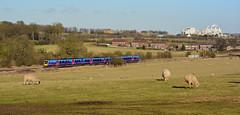Munch Bunch (Feversham Media) Tags: lincolnshire northlincolnshire firsttranspennine meltonross dmus dieselmultipleunits class185dmus desiros desirodmus kirtonlimeworks