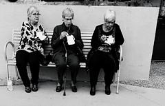 Lela, Lila, Lola (MPnormaleye) Tags: park city ladies urban bw monochrome bench blackwhite women candid neighborhood utata trio unposed