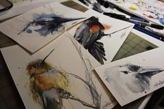 SOLDFLA (Jennifer Kraska) Tags: bird art watercolor jennifer kraska jenniferkraska