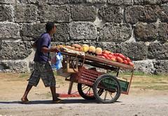 Exotic fruits (SamSpade...) Tags: colombia candid mango cart citywall cantelope nispero maracuya 567 cartagenadeindias borojo 1502115431 exoticfruitseller