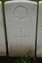 T. Walker, Canadian Infantry, 1915, War Grave, Poperinghe (PaulHP) Tags: ww1 world war 1 first belgium military cemetery marker grave headstone t thomas walker private service number 28808 23rd april 1915 canadian infantry 16th bn battalion poperinghe old cwgc