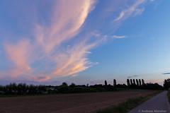 AA-20160727-1136 (andreas.abzieher) Tags: canon canon6d canonef24mmf14liiusm dossenheim sunset landscape primelens badenwrttemberg deutschland de