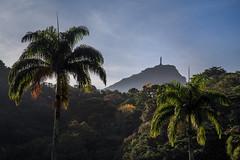 Cristo Redentor (Pablo.Barros) Tags: brazil verde green southamerica brasil riodejaneiro landscape paisagem cristoredento lagoarodrigodefreitas americadosul