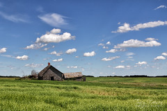 Prairie Skies (friesen4) Tags: prairie prairies skies sky blue canola field fields crops farms barns school schools