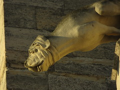 Gargoyle - Narbonne (kakov) Tags: narbonne narbona languedocroselln siglo xiii xiv century 13th 14th gtico gothic