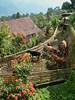 farming (S_Artur_M) Tags: india indien lumix panasonic reise tz10 travel himalaya farming cows mountains sikkim