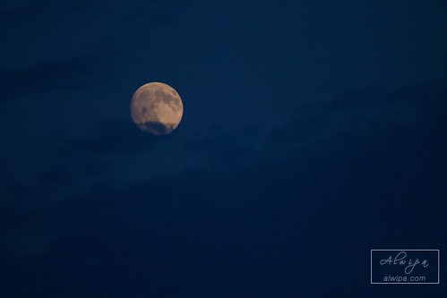 """The Moon • <a style=""""font-size:0.8em;"""" href=""""http://www.flickr.com/photos/104879414@N07/28410787684/"""" target=""""_blank"""">View on Flickr</a>"""