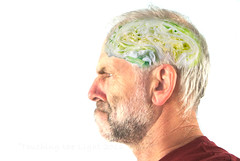 "2016_366206 - Lettuce Brain • <a style=""font-size:0.8em;"" href=""http://www.flickr.com/photos/84668659@N00/28460587452/"" target=""_blank"">View on Flickr</a>"