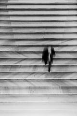 On Lines (C_MC_FL) Tags: person motion stairs lines bw blackandwhite blackwhite exposure canon eos 60d tamron b008 18270 motionblur bewegung bewegungsunschrfe stufen stiegen linien sw schwarzweis fotografie photography street streetphotography geometry geometrie minimalism minimalismus simple minimalistic