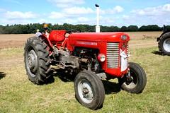 MASSEY FERGUSON 65 (WESTROWMAN) Tags: tractor masseyferguson masseyferguson65tractor 2016weetingsteamcountryshow