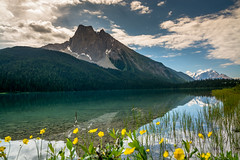 Paradise (Julien//K) Tags: paradise emerald lake yoho national park british colombia canada flowers mountain clouds turquoise water landscape forest outdoors nikon d7100 tokina 1224mm
