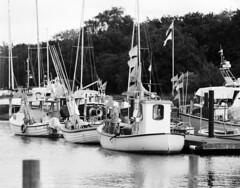 Test smc Pentax 67 300mm F4 (holtelars) Tags: pentax pentax6x7 smcpentax67 300mm f4 67 6x7 idealformat 120 mediumformat blackandwhite monochrome bw film analog analogue foma fomapan fomapan400 fomapan400action 400iso classicblackwhite filmforever filmphotography lars holte homeprocessing jobo autolab atl1500 marina nivhavn fishingboats danmark denmark lenstest