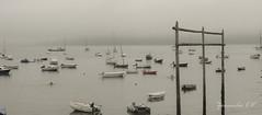 Redes (Zenaida.CV) Tags: sail puerto marinero navy galicia redes sea mar