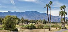 San Jacinto Peak from Cathedral City (acase1968) Tags: 6photo photomerge desert trip nikon d750 nikkor 85mm f18g welk resorts golf course