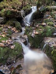 P1150134 (TallGrass-IA) Tags: edgewood iowa unitedstates us panasonic g6 1235 lumix micro43 microfourthirds waterfalls longexposure hiking outdoor nature moss