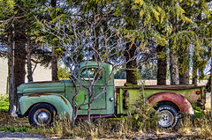 (Pattys-photos) Tags: old truck international rusty