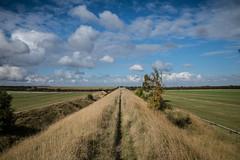 Devil's Dyke Walk-9 (adambowie) Tags: devilsdyke cambridgeshire newmarket