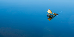 Una hoja pas por mi vida... (Giacomo della Sera) Tags: azul blue hoja leaf composicion composition minimalismo mininalism rio river tree arbol