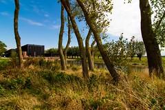 _DSC6791 (durr-architect) Tags: info centre zwin heartland belgium architecture cousse goris nature park wood structure border aday16 group area green trees