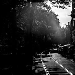 Rotterdam (Nico_1962) Tags: leica m240 teleelmarit nederland rangefinder bw zwartwit rotterdam thenetherlands leicam manualfocus primelens straat street city stad urban square vierkant